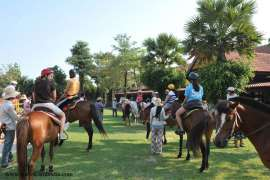 American school of Dubai- Ride a Horse