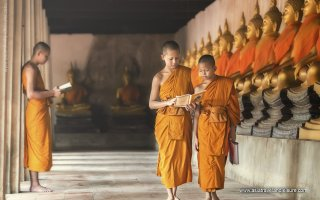 Buddhist moks in Cambodian temple