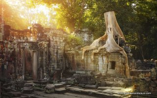 On the ruins of Preah Khan temple complex in Cambodia