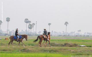 Riding horse in Siem Reap