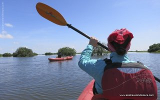 Kayaking in Tonle Sap lake